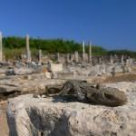Perge Antik Kenti, Antalya
