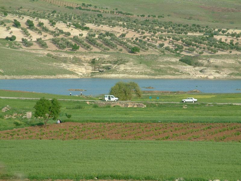 kilis yöresinde tarım