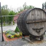 Şarap Fıçısı