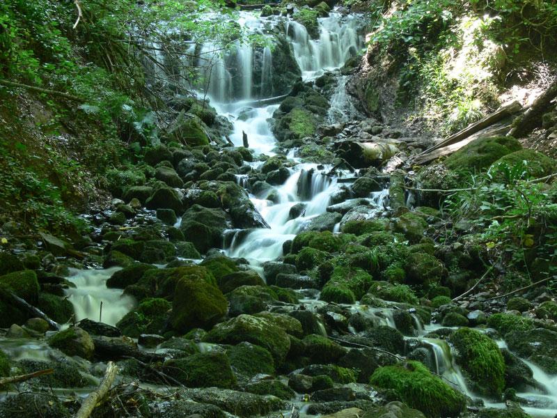 taşların arasından akan sular