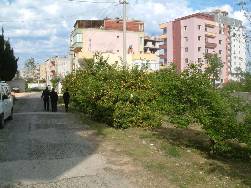 Erdemli sokakları
