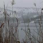 Eymir'de Doğal Hayat