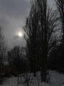 Eymir Kış Güneşi