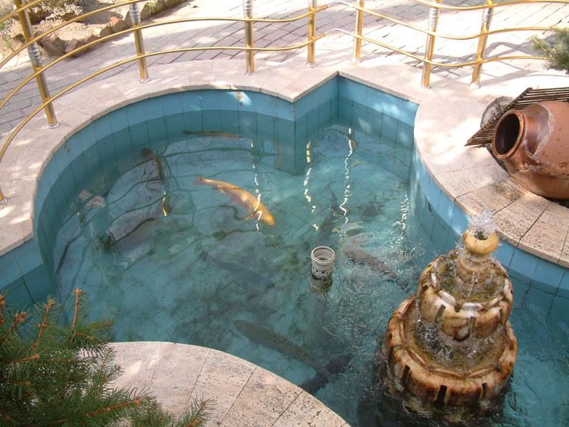 Alabalık havuzu