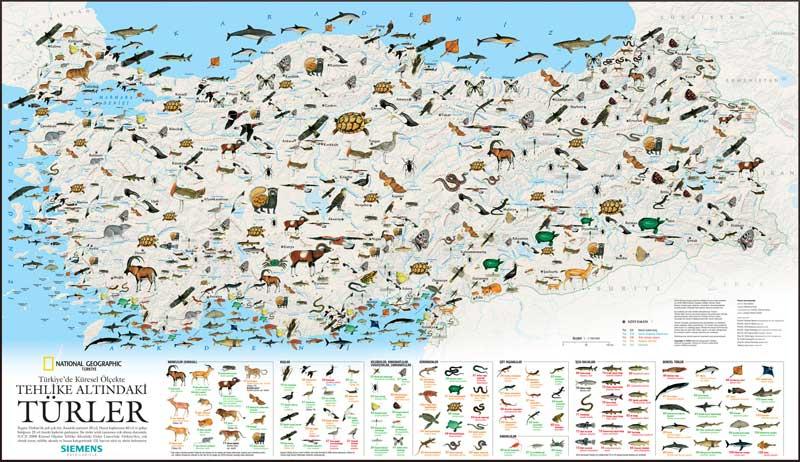 Tehlike altındaki türler haritası tehlike altında olan türler