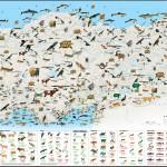 National Geographic Tehlike Altındaki Türler Haritası Büyük Boy
