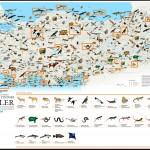 National Geographic Yüksek Tehlikedeki Türler Haritası Büyük Boy