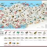 Tehlike Altındaki Türler Haritası – Yok Olmak Üzere Olan Türler (National Geographic)