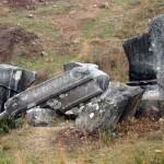 berberkaya-lahiti-korumaya-aliniyor-53e8d2903ca9a