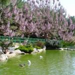Gaziantep Hayvanat Bahçesi'nden bir kare