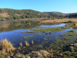Çubuk Civarında göl