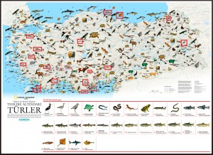 National Geographic Yok Olan Türler Haritası Büyük Boy