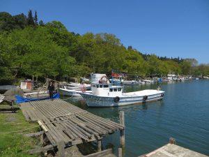 Sinop Akliman